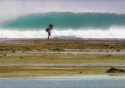 WCT Professional Surfing World Tour